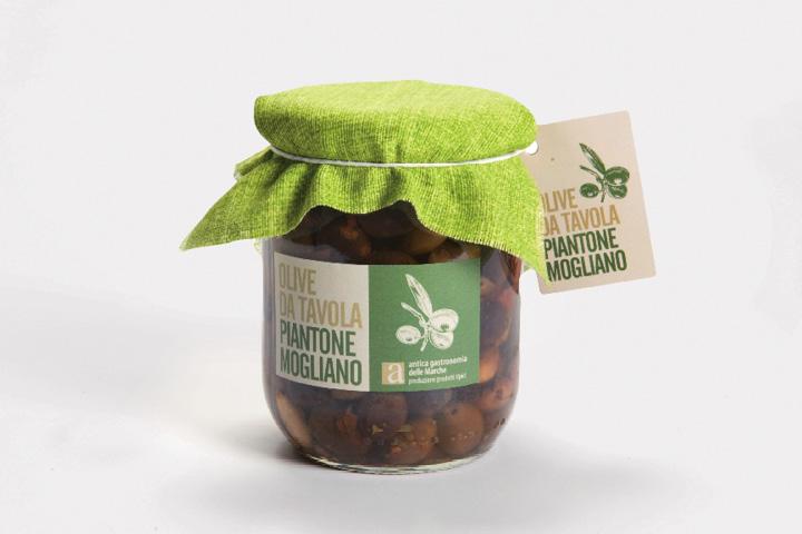 Olive da tavola Piantone Mogliano